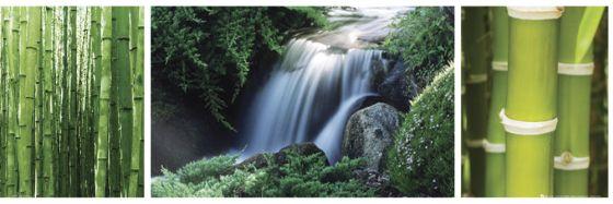 Chiny - Las Bambusowy i Wodospad - Tryptyk - plakat