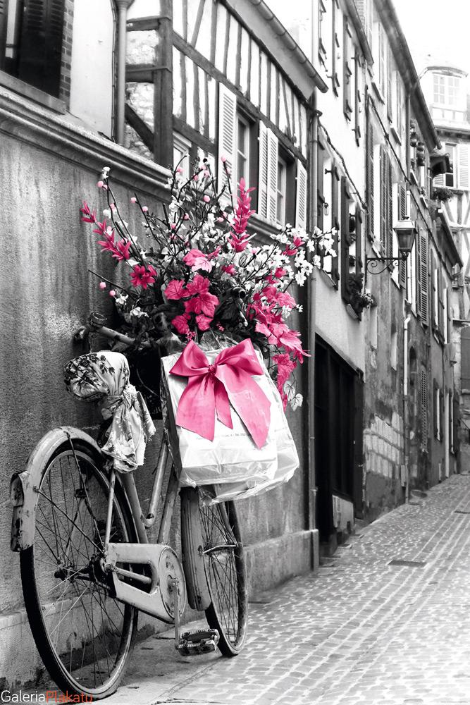 Paryż Różowe Kwiaty Na Rowerze Plakat